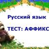 Тест по русскому языку: аффиксы