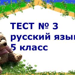 Заключительный тест по русскому языку за 5 класс