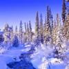 """Диктанты на тему """"Зима"""" для 5 класса"""