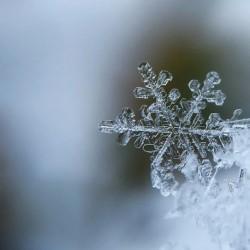 """Диктанты на тему """"Зима"""" для 6 класса"""
