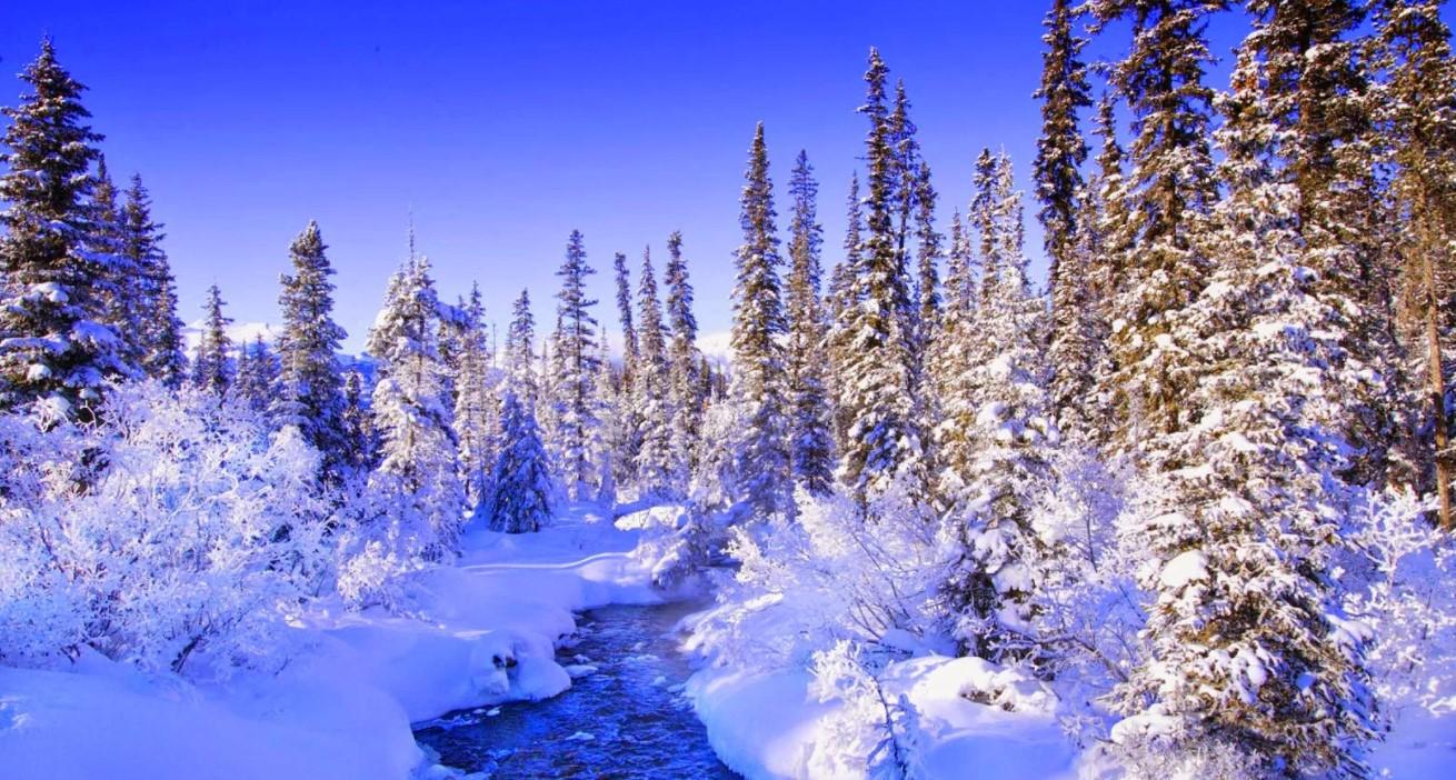 Диктанты на тему зима для пятого класса